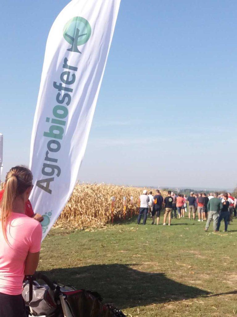 Veřejná sklizeň zrna kukuřice